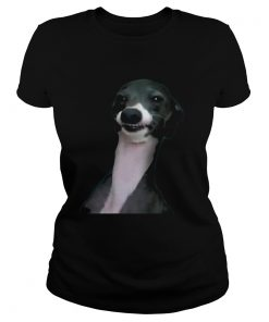 Jenna Marbles Dog Kermit Shirt Classic Ladies