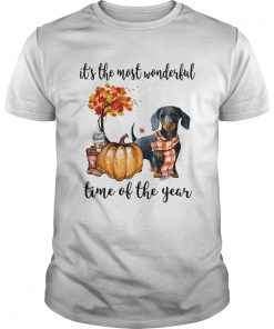 Dachshund its the most wonderful time of the year  Unisex