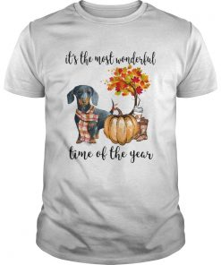 Dachshund pumpkin Its the most wonderful time of the year  Unisex
