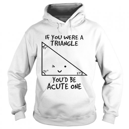 If you were a triangle youd be acute one  Hoodie