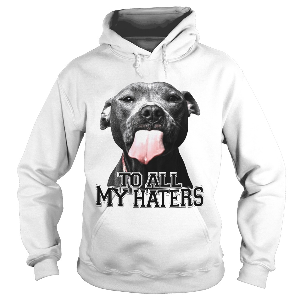 Pitbull to all my haters Hoodie