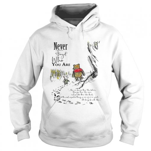Winnie The Pooh Never Forget Who You Are Shirt Hoodie