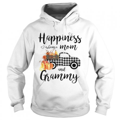 Happiness is being a mom and grammy TShirt Hoodie