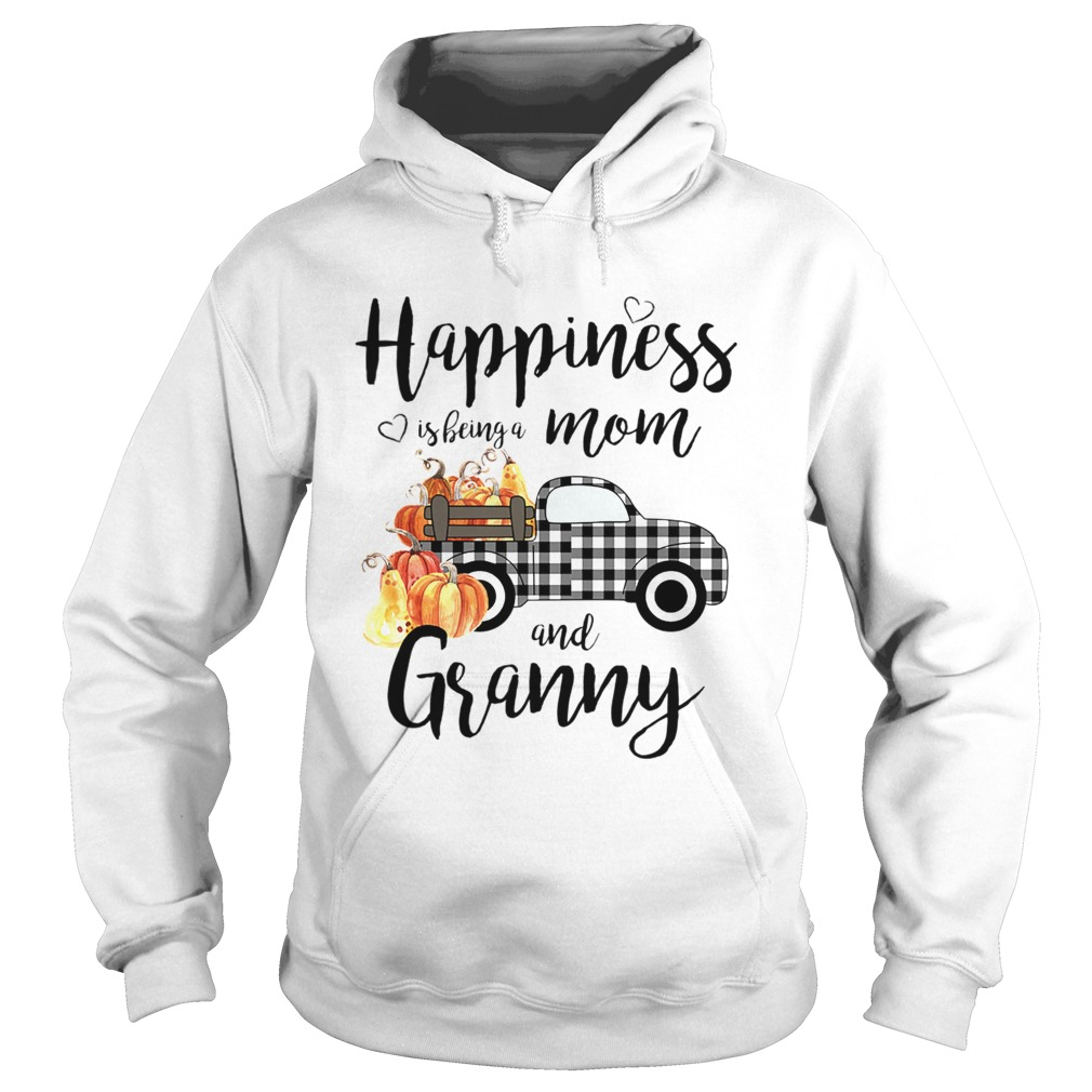 Happiness is being a mom and granny T Hoodie