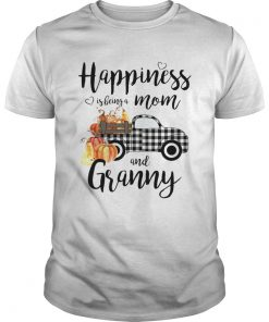Happiness is being a mom and granny T Unisex