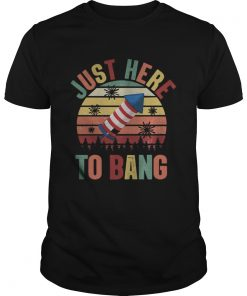 Just Here To Bang Independence Day Funny 4th Of July Vintage  Unisex